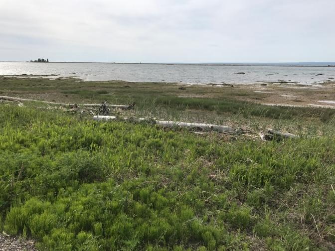 L'Acadie: la mer, l'amère, la mère